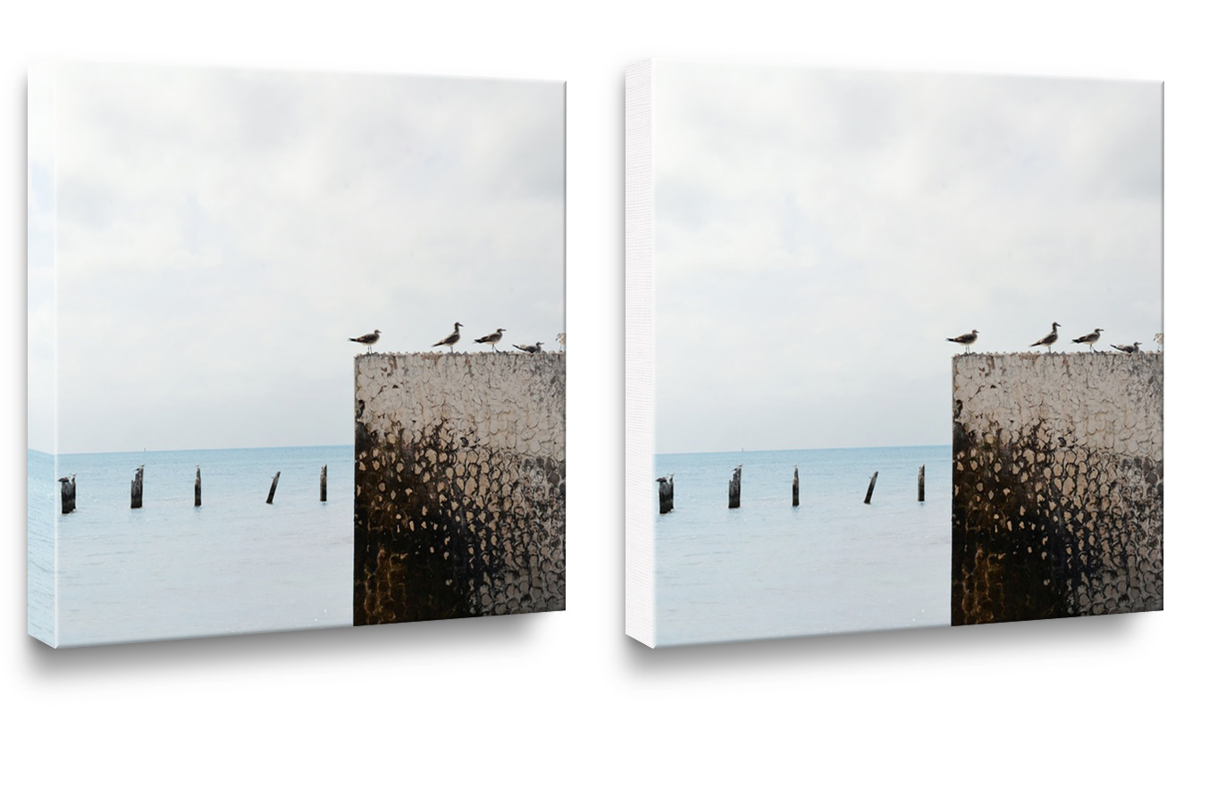 Two square canvas prints hanging on a wall. One fully wrapped and one with white edge.